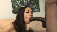 Sultry ebony girl loses her white panties and gives a black dick a try