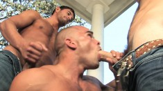 Attractive and horny guys get together for an exciting gay threesome