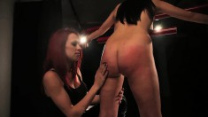 Missogyny Bounds And Gags Sophia Elly And Vibrates Her Cunny