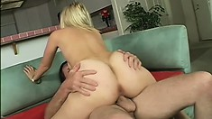 Phat ass, busty Alex Love loves anything when its banging her holes