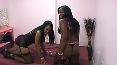 Sensual black lesbians have some intense girl-on-girl action