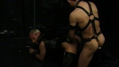 Leather daddy is in the dungeon dominating the ass of his slave