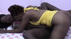 Curvy black lesbians enjoy the delicious taste of each other's cunts