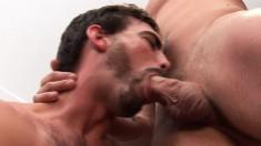 Handsome lovers exchange oral pleasures before indulging in anal sex