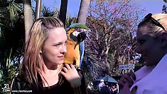 The two beautiful blondes smile as a parrot sits on their shoulder